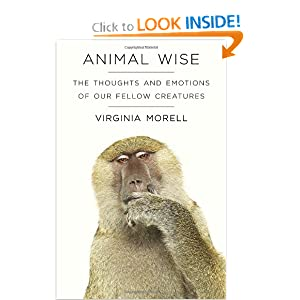 The Thoughts and Emotions of Our Fellow Creatures - Virginia Morell