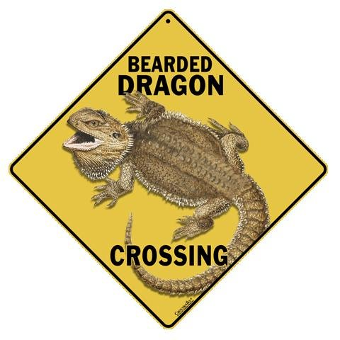 Bearded Dragon Crossing All Weather Sign