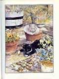 img - for the cat who came to stay. book / textbook / text book