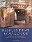 Image de Resplendent Synagogue: Architecture and Worship in an Eighteenth-Century Polish Community (The Tauber Institute Series for the Stu