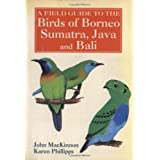 A Field Guide to the Birds of Borneo, Sumatra, Java, and Bali: The Greater Sunda Islandspar John MacKinnon