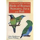 A Field Guide to the Birds of Borneo, Sumatra, Java, and Bali: The Greater Sunda Islandspar John MacKinnon