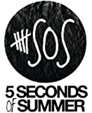 Their Story : 5 Seconds of Summer (English Edition)