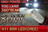 [YOUCM]H8/H11 LEDフォグランプ トヨタ RAV4 H17.11~H20.8 ACA3#系 リアスペアタイヤ付 6000K 80W 2個