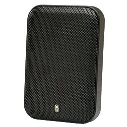 Brand New Polyplanar Platinum Panel Speaker - (Pair) Black