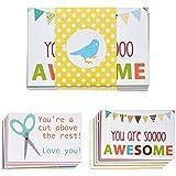 Designer Lunchbox Notes - 2 Packs of 27 Cards - Multi