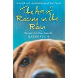 The Art of Racing in the Rainby Garth Stein