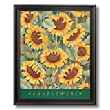 Argosy Country Sunflowers Contemporary Home Decor Wall Picture Black Framed Art Print