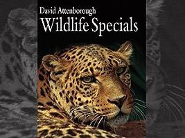 BBC Earth Wildlife Specials