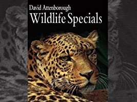 BBC Earth Wildlife Specials