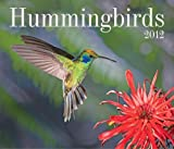 Hummingbirds 2012
