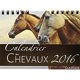 Calendrier des chevaux 2016