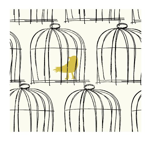 York Wallcoverings Tres Chic BL0428 Birdcage Wallpaper, White/Black/Chartreuse