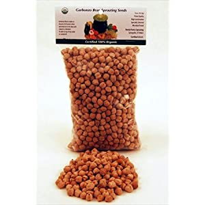 Dried Garbanzo Beans- Organic- 1 Lbs- Dry Garbonzo Bean / Seeds- For Planting, Sprouting Seed, Gardening, Hummus, Cooking, Food Storage, Sprouts