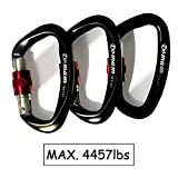 Domum 25KN Super Lightweight Carabiner Clip Holds 4400lbs Plus with Screw Gate EN12275 Certified for Rock Climbing & Hammock Used for Exploring Rappelling (Pack of 3 Black)