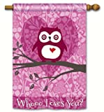 Breeze Art - Who Loves You? - Valentines Day Standard Flag 28 x 40