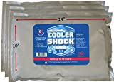 """3 Lg. Cooler Freeze Packs 10""""x14"""" - No More Ice! Cooler Shock Replaces Ice and Is Reusable"""