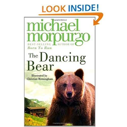 dancing bear video stream
