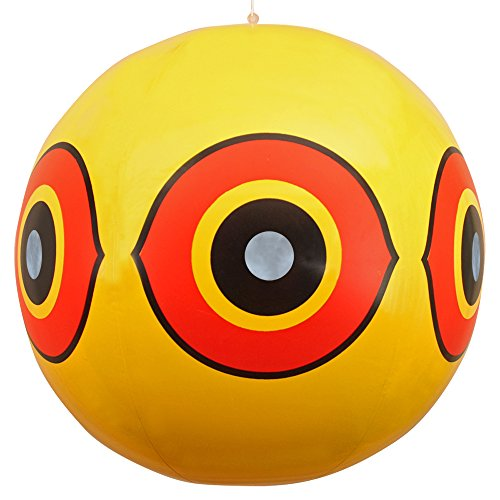 globos-de-ojo-ahuyentador-repelente-de-aves-detiene-con-rapidez-los-problemas-de-peste-de-aves-disua