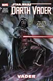 img - for Star Wars: Darth Vader Vol. 1 (Star Wars (Marvel)) book / textbook / text book