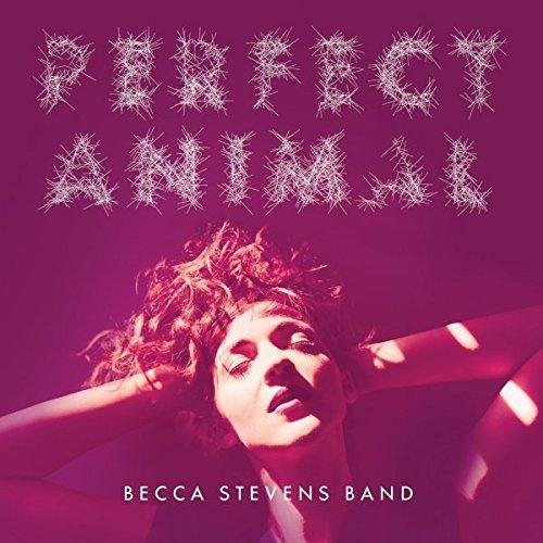 Becca Stevens Band – Perfect Animals – CD – FLAC – 2015 – BOCKSCAR