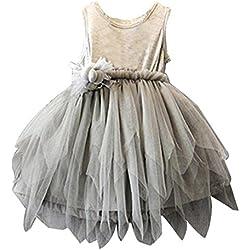 Amlaiworld Vestito per bambini,Bambino fiore principessa partito nozze Tulle Tutu vestito (110)