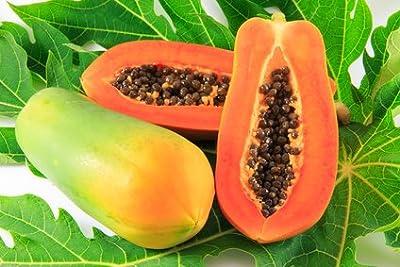 Slice Of Nature 100% Pure Papaya Fruit Extract - Papaya Powder Face Mask - Skin Rejuvenation - Skin Lightening - Skin Brightening - Concentrate Papaya Enzyme Papain Papaya Extract Facial Mask 5 oz