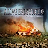 echange, troc A Love Ends Suicide - In The Disaster