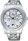CITIZEN (シチズン) 腕時計 COMPLICATION コンプリケーション キャランデュリエ Eco-Drive エコ・ドライブ BU0010-66A メンズ