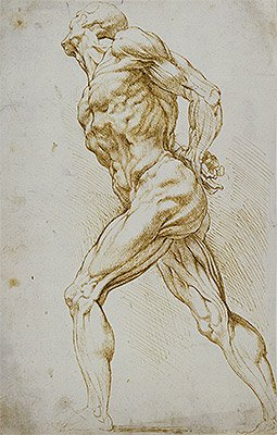Peter Paul Rubens (Anatomical Study (A Nude Striding to the Right)) Print on Fine Art Paper Reproduction (20.1x12.8 in) (51x32.5 cm)