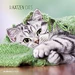 Katzen 2017 - Brosch�renkalender