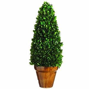 Silk Decor Preserved Boxwood Cone Topiary, 20.8-Inch, Green
