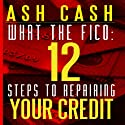 What the FICO: 12 Steps to Repairing Your Credit Audiobook by Ash Cash Narrated by Ash Cash