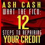 What the FICO: 12 Steps to Repairing Your Credit | Ash Cash