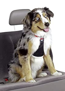 Easy Rider Car Harness - Medium