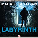 Labyrinth (       UNABRIDGED) by Mark T. Sullivan Narrated by Barbara Edelman