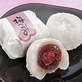 [敬老の日和菓子贈り物] 福井銘菓羽二重餅 梅つつみ 10個1箱