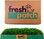 Fresh Patch Disposable Dog Potty