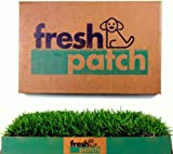 Fresh Patch (Patented) Disposable Dog Potty with REAL Grass