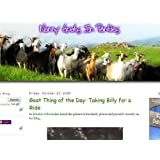 Nanny Goats in Panties