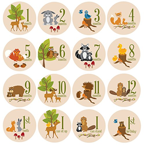 baby-milestone-stickers-by-zelda-matilda-gorgeous-woodland-critters-monthly-growth-bodysuit-stickers