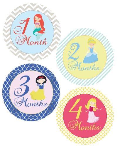 Fairy Tale Princesses Monthly Onesie Sticker - Waterproof and Durable - Includes 1-12 Month Stickers - 1
