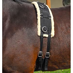 Intrepid International Nylon-Fleece Training Horse Surcingle