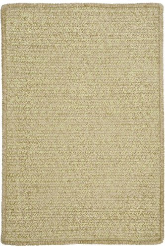 Allusion Area Area Rug, 2'x4', SPROUT GREEN