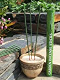 Amazon Lights All-Natural Premium Citronella Outdoor Garden Incense Sticks with 2.5 - 3.0 Hour Burn Time