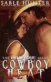 Cowboy Heat (The Hell Yeah! series)