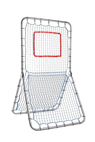 Champion Sports Multi-Sport Net Pitch Back Screen (Pitch Back Football compare prices)
