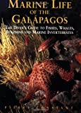 Marine Life of the Galapagos: Divers