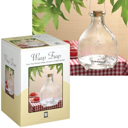 Buy Wasp Trap: Glass Trap Controls Wasps, Hornets and Yellow Jackets