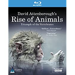 David Attenborough's Rise of Animals: Triumph of T [Blu-ray]